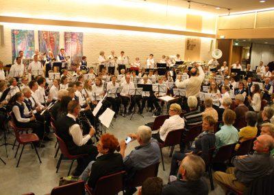 zmf2013-afb-orkesten (43)