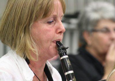 zmf2015-afb-orkesten (23)